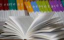 ¿Bibliotecas sin libros?